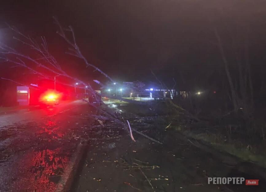 70 населених пунктів Львівщині без електрики через буревій